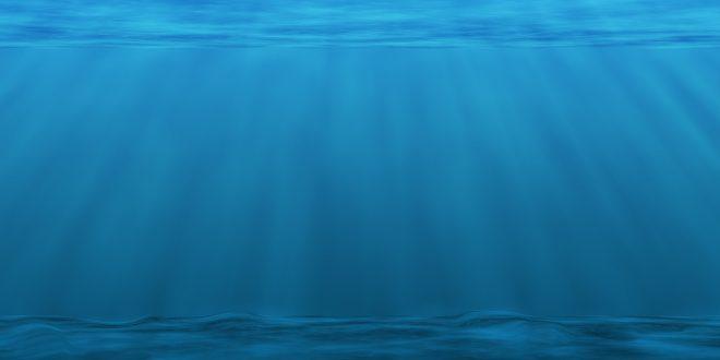 acidificación del océano