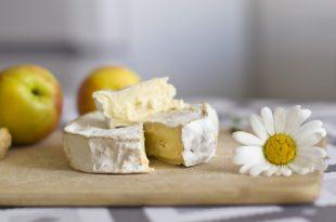 hongos queso camembert