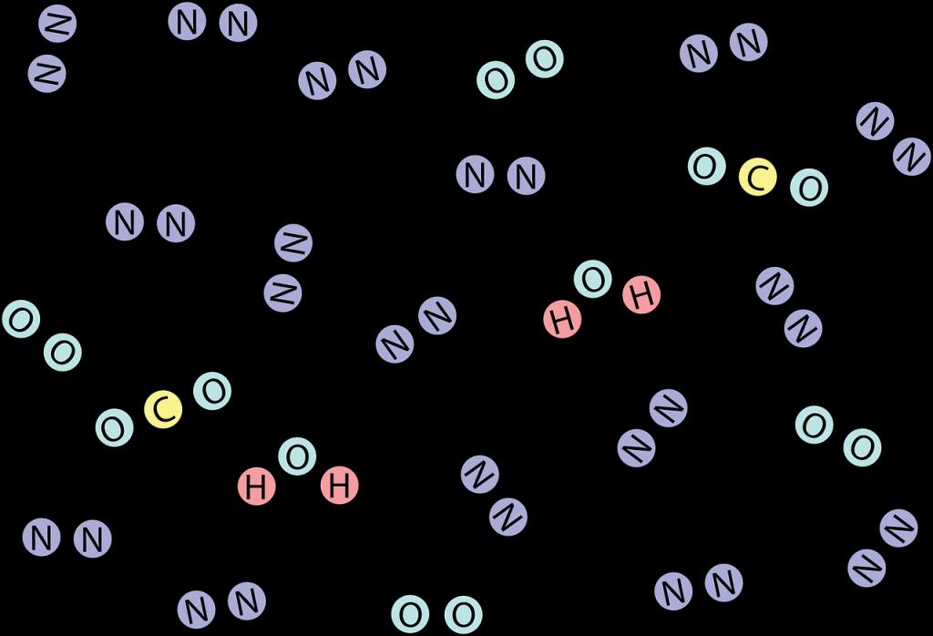 uno de los niveles de organización de la materia y los seres vivos: las moléculas