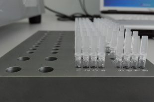 usos de la PCR