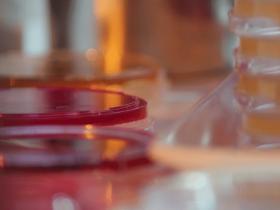 impresión 3D celulas madre